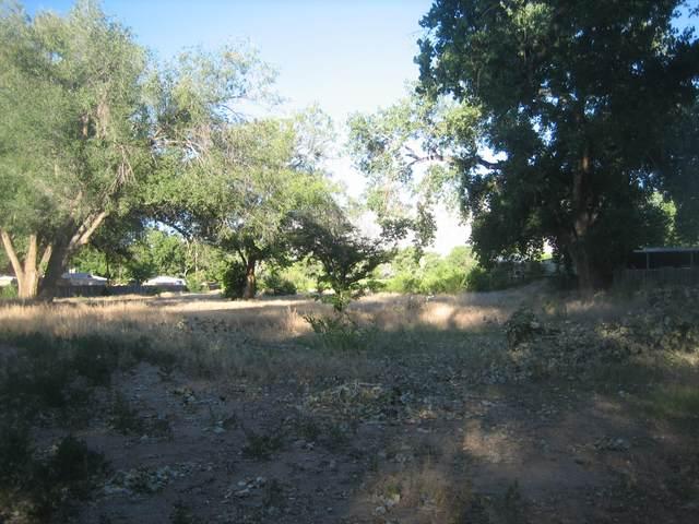 7648 Corrales Road, Corrales, NM 87048 (MLS #975524) :: The Buchman Group