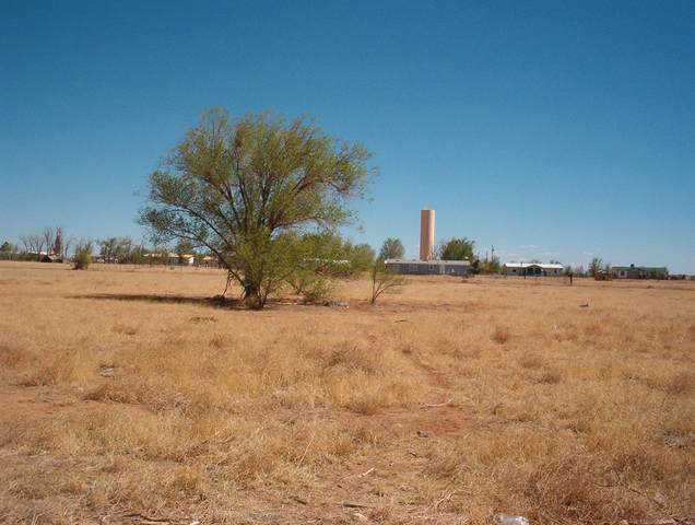 0 Manzano Street, Moriarty, NM 87035 (MLS #975567) :: The Bigelow Team / Red Fox Realty