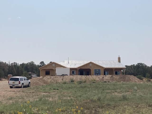 26 Vista Encantada Drive, Edgewood, NM 87015 (MLS #975568) :: Campbell & Campbell Real Estate Services