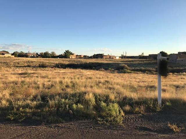 Eagle Rock Avenue NE, Albuquerque, NM 87122 (MLS #975707) :: HergGroup Albuquerque