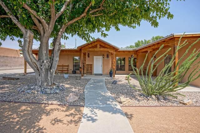 1232 Cielo Vista Del Norte NW, Corrales, NM 87048 (MLS #975720) :: Berkshire Hathaway HomeServices Santa Fe Real Estate