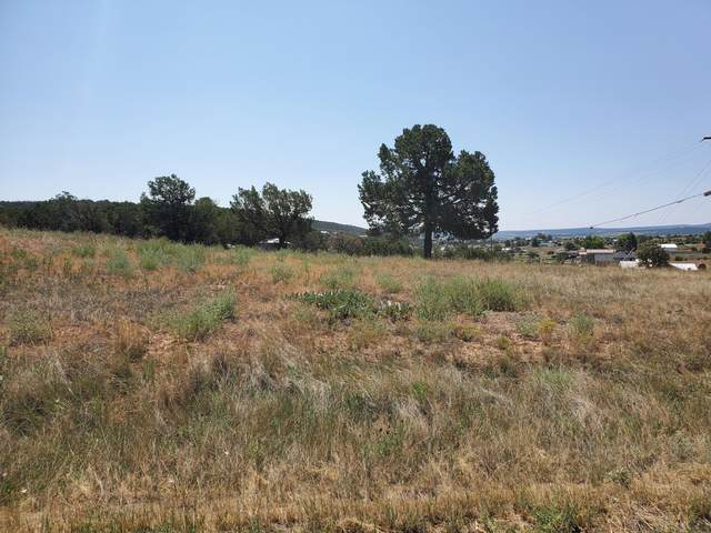 2 Ultimate, Edgewood, NM 87015 (MLS #975829) :: Campbell & Campbell Real Estate Services