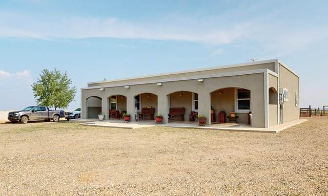 362 Howell Road, Estancia, NM 87016 (MLS #975849) :: Campbell & Campbell Real Estate Services