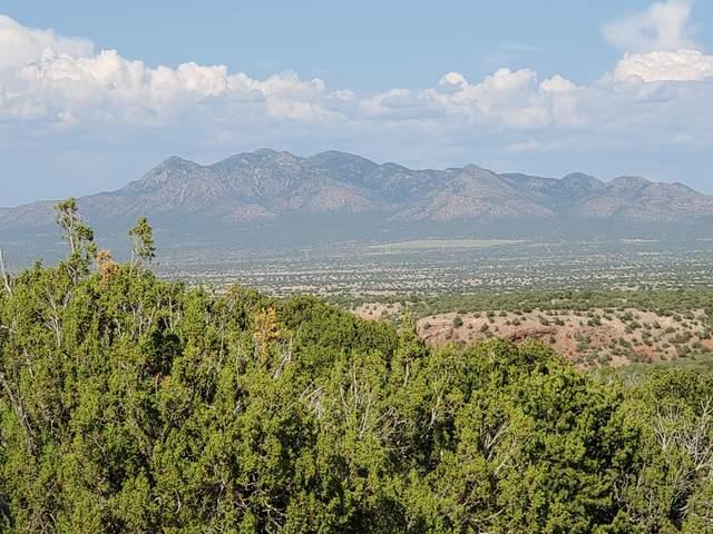 6 Luna Azul, Sandia Park, NM 87047 (MLS #975892) :: Keller Williams Realty