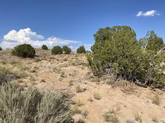 2304 Desert Zinnia Road NE, Rio Rancho, NM 87144 (MLS #975954) :: HergGroup Albuquerque