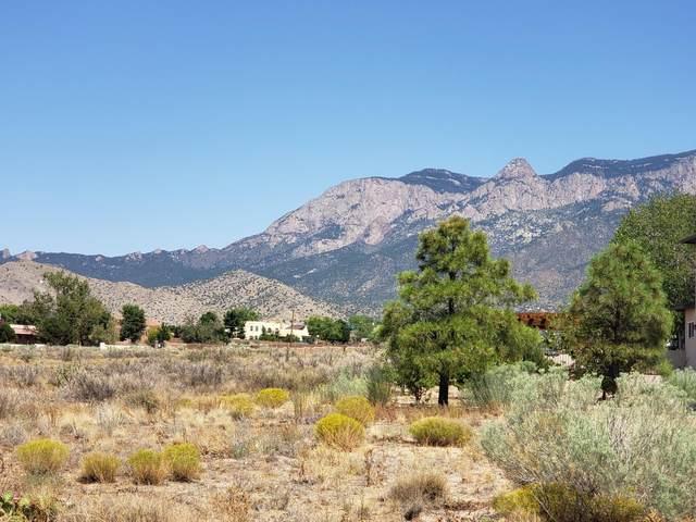 Eagle Rock Avenue NE, Albuquerque, NM 87122 (MLS #975963) :: HergGroup Albuquerque