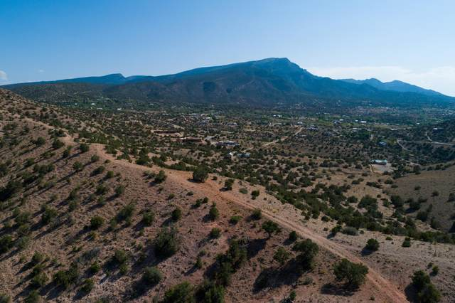 Tract 10 Lands Of De Lara Antonio, Placitas, NM 87043 (MLS #975999) :: Campbell & Campbell Real Estate Services