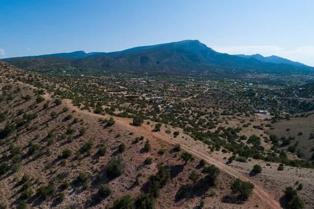 Tract 10 Lands Of De Lara Antonio, Placitas, NM 87043 (MLS #975999) :: The Buchman Group