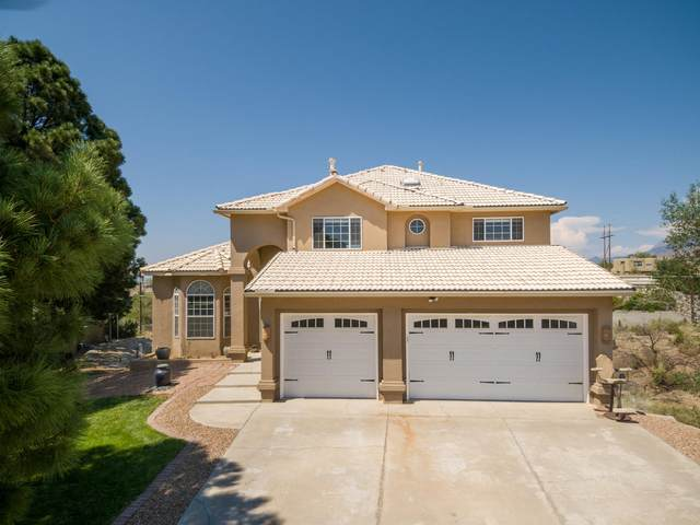 803 Warm Sands Court SE, Albuquerque, NM 87123 (MLS #976079) :: Sandi Pressley Team