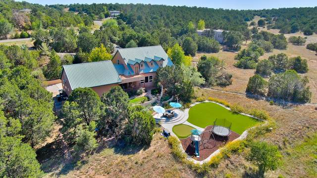 59 Woodlands Drive, Tijeras, NM 87059 (MLS #976126) :: The Bigelow Team / Red Fox Realty