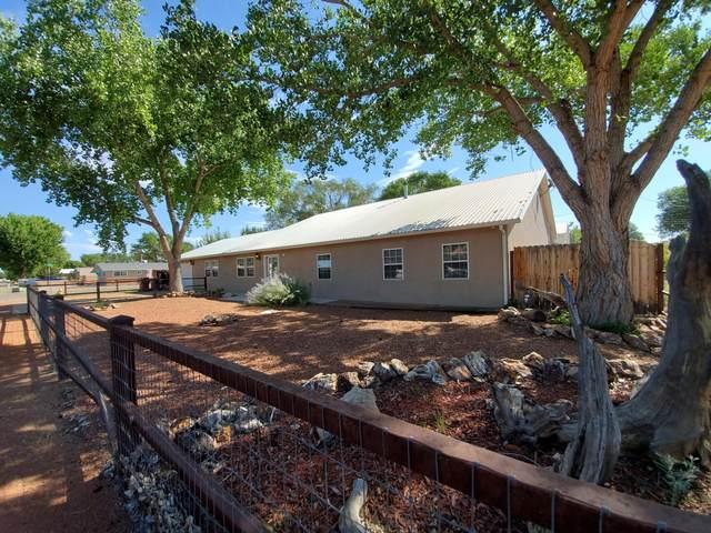 430 Ranchitos Road, Bosque Farms, NM 87068 (MLS #976157) :: Sandi Pressley Team