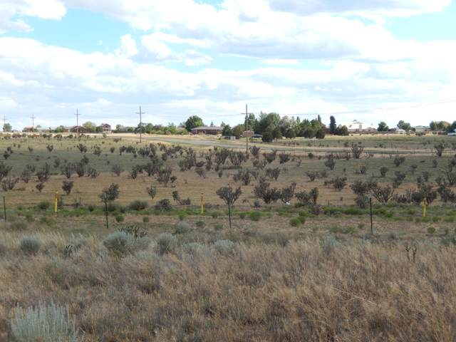 12 E Hill Ranch Road, Edgewood, NM 87015 (MLS #976297) :: The Buchman Group