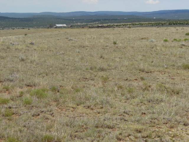 8980 Highway 55, Estancia, NM 87016 (MLS #976299) :: Campbell & Campbell Real Estate Services