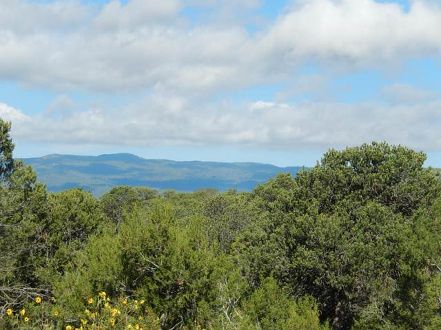 0 Sedillo Hill Place, Tijeras, NM 87059 (MLS #976300) :: Keller Williams Realty