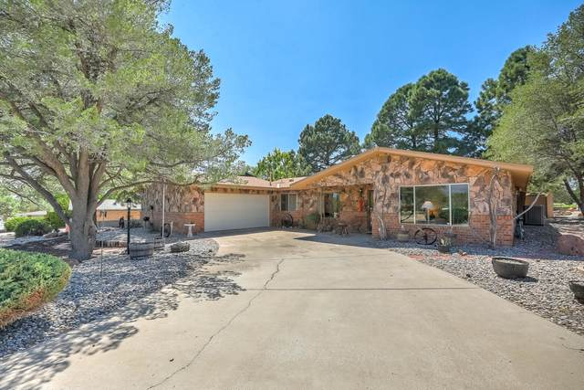 9915 Columbus Circle NW, Albuquerque, NM 87114 (MLS #976332) :: HergGroup Albuquerque
