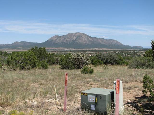 6 Punch Court, Tijeras, NM 87059 (MLS #976338) :: The Bigelow Team / Red Fox Realty