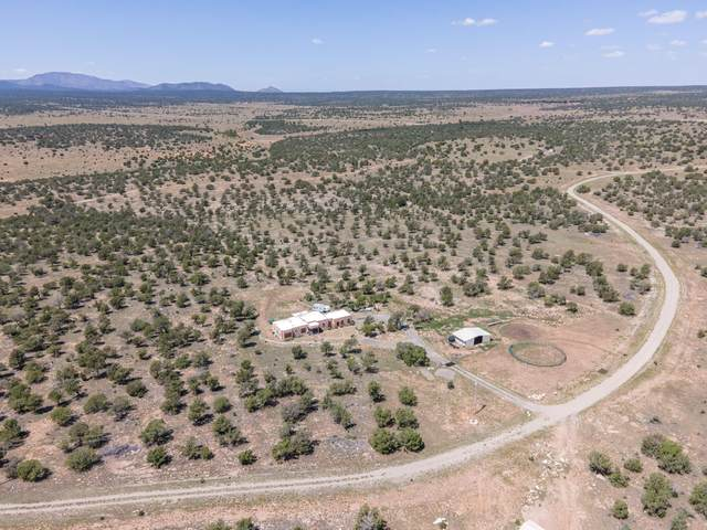 180 Mayeux Road, Corona, NM 88318 (MLS #976467) :: The Bigelow Team / Red Fox Realty