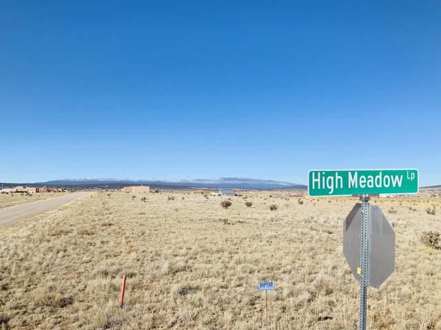 78 High Meadow Loop, Edgewood, NM 87015 (MLS #976542) :: Sandi Pressley Team