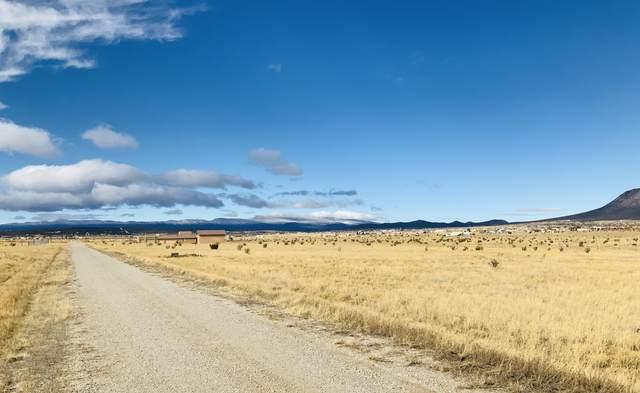 110 High Meadow Loop, Edgewood, NM 87015 (MLS #976544) :: The Buchman Group