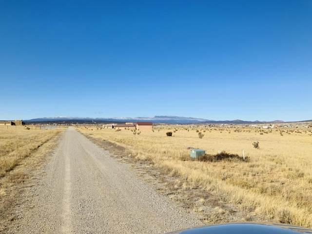 106 High Meadow Loop, Edgewood, NM 87015 (MLS #976545) :: The Buchman Group