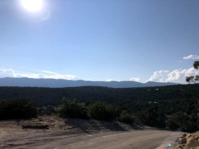 Lost Valley Loop, Cedar Crest, NM 87008 (MLS #976556) :: Sandi Pressley Team