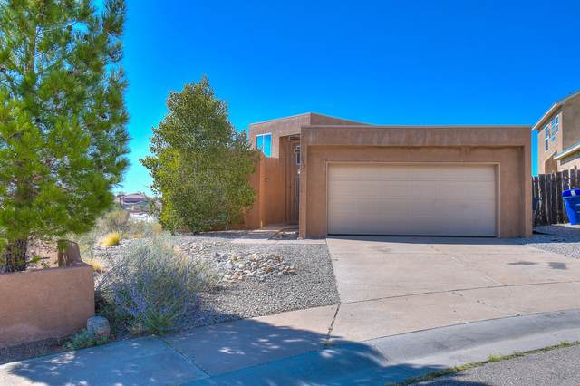 355 Pinon Creek Trail, Albuquerque, NM 87123 (MLS #976583) :: Sandi Pressley Team