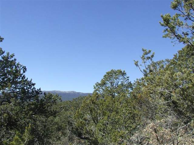 91 Lost Valley Loop, Cedar Crest, NM 87008 (MLS #976598) :: Campbell & Campbell Real Estate Services