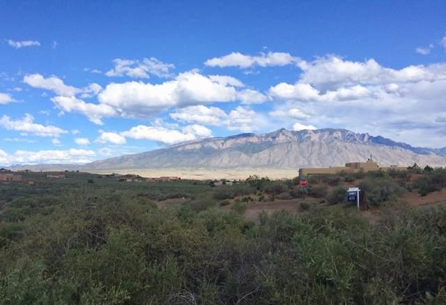 6123 La Paz Road NE, Rio Rancho, NM 87144 (MLS #976600) :: Sandi Pressley Team