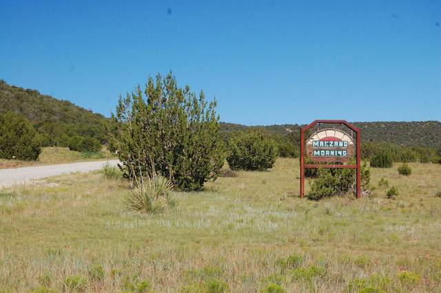 Manzano Morning, Manzano, NM 87016 (MLS #976629) :: The Buchman Group