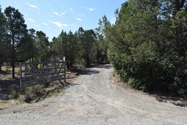 149 Holli Loop, Edgewood, NM 87015 (MLS #976633) :: The Bigelow Team / Red Fox Realty
