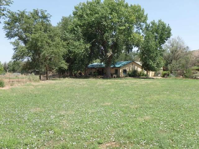 La Joya Farm Lot's 7A, 8, 9, La Joya, NM 87028 (MLS #976692) :: Keller Williams Realty