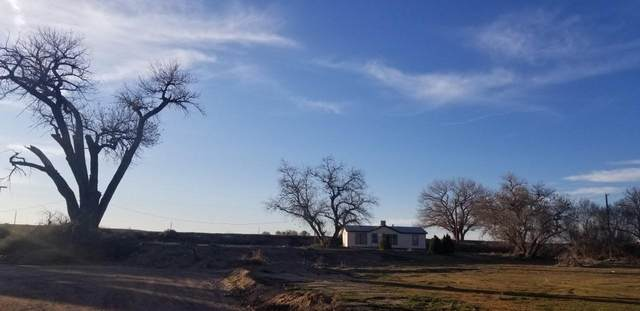 50 Sunset Road, Belen, NM 87002 (MLS #976708) :: Sandi Pressley Team