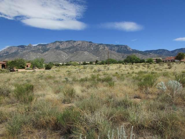 Anaheim NE, Albuquerque, NM 87122 (MLS #976724) :: Campbell & Campbell Real Estate Services
