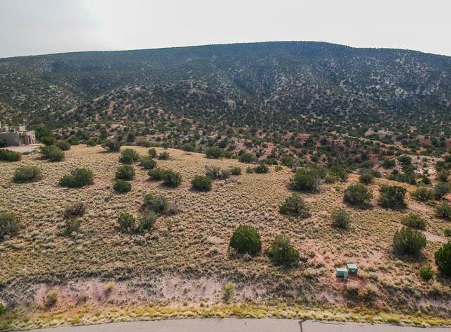 107 Buffalo Ridge Court, Placitas, NM 87043 (MLS #976960) :: Berkshire Hathaway HomeServices Santa Fe Real Estate