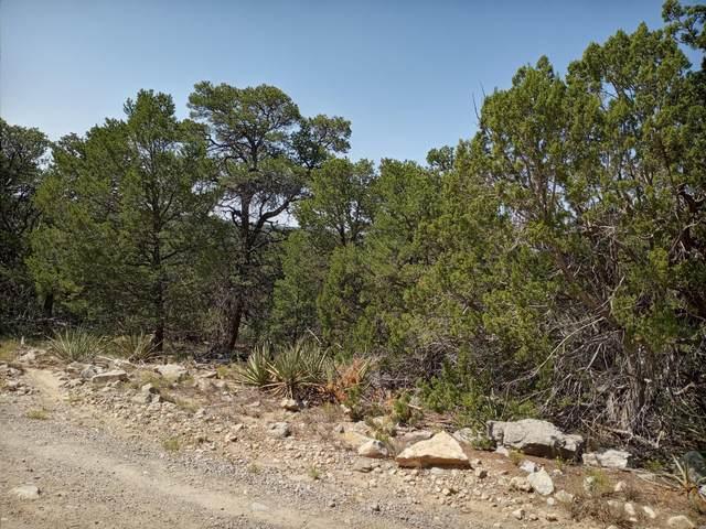 Sunlight Road, Edgewood, NM 87015 (MLS #976980) :: Keller Williams Realty