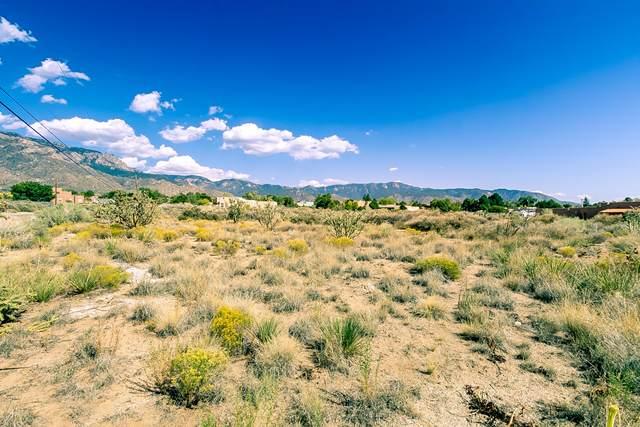 Signal Avenue NE, Albuquerque, NM 87122 (MLS #977039) :: HergGroup Albuquerque
