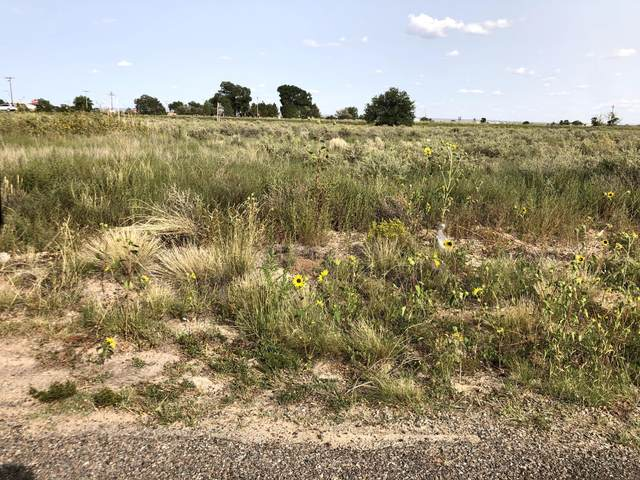 Clubhouse Road, Moriarty, NM 87035 (MLS #977057) :: Berkshire Hathaway HomeServices Santa Fe Real Estate