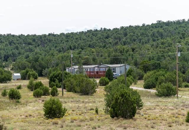 15 Romance Lane, Edgewood, NM 87015 (MLS #977062) :: Berkshire Hathaway HomeServices Santa Fe Real Estate