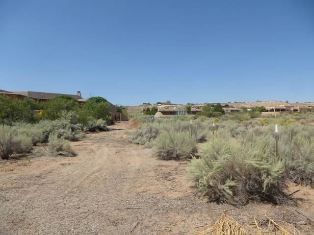 Calle Blanca South, Corrales, NM 87048 (MLS #977096) :: Sandi Pressley Team