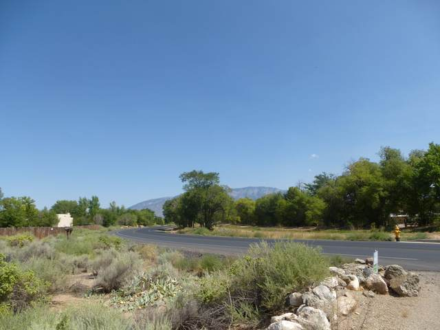 Loma Larga Road, Corrales, NM 87048 (MLS #977098) :: Sandi Pressley Team