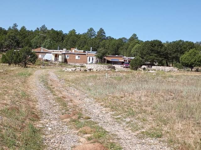 39 Pleasant Valley Drive, Edgewood, NM 87015 (MLS #977102) :: Berkshire Hathaway HomeServices Santa Fe Real Estate