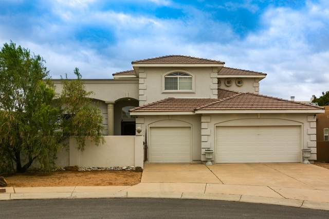 8905 Robs Place NE, Albuquerque, NM 87122 (MLS #977110) :: Campbell & Campbell Real Estate Services