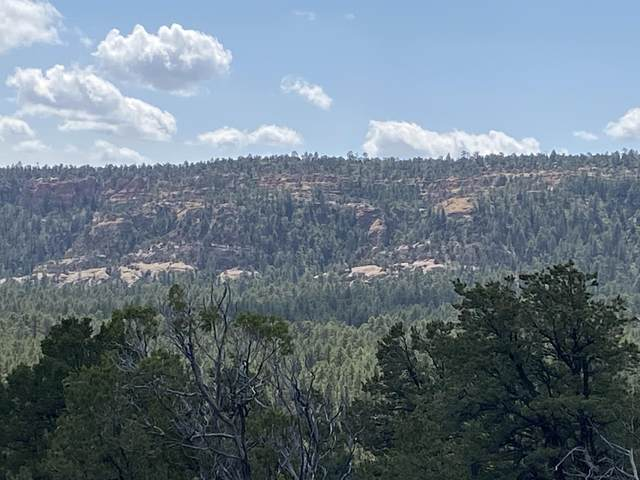 Lot 7 Bluebird Road, Ramah, NM 87321 (MLS #977137) :: The Buchman Group