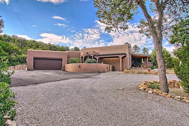 135 Via Sedillo Road, Tijeras, NM 87059 (MLS #977169) :: Sandi Pressley Team