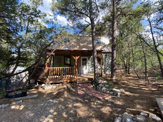 49 La Cresta Circle, Tijeras, NM 87059 (MLS #977170) :: Sandi Pressley Team