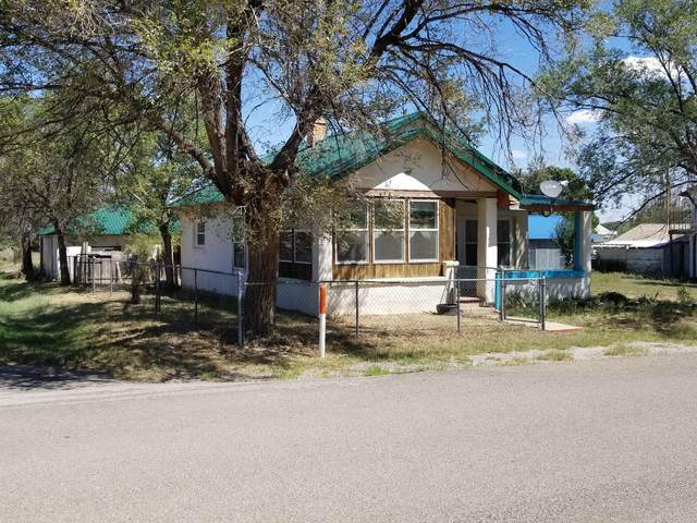 290 Thompson Avenue, Corona, NM 88318 (MLS #977191) :: The Buchman Group