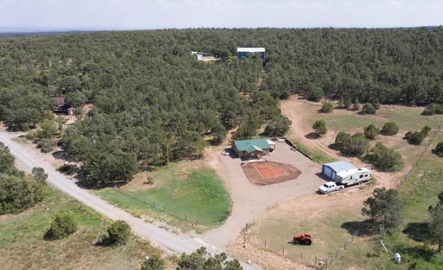 10 Ogaz Loop, Edgewood, NM 87015 (MLS #977203) :: Berkshire Hathaway HomeServices Santa Fe Real Estate