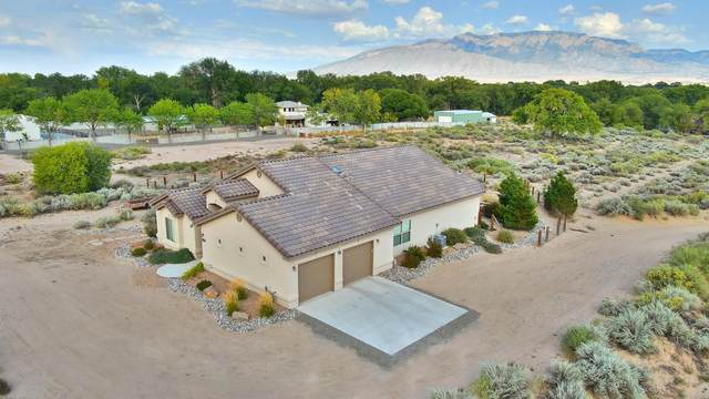 62 Victor Road, Corrales, NM 87048 (MLS #977207) :: Sandi Pressley Team