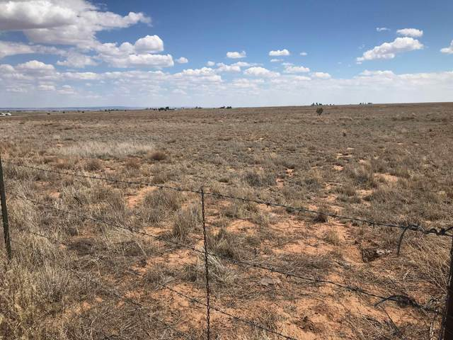 356 Highway 472, Stanley, NM 87056 (MLS #977222) :: Campbell & Campbell Real Estate Services