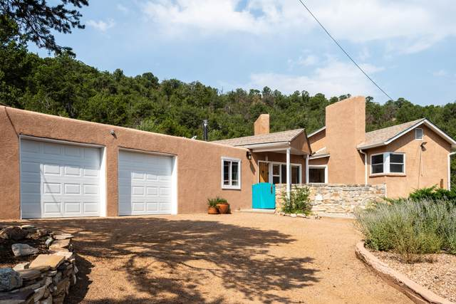 10 Los Alamitos Drive, Tijeras, NM 87059 (MLS #977230) :: Sandi Pressley Team